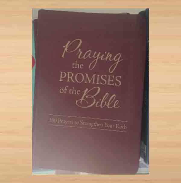 PRAYING-THE-PROMISES-OF-THE-BIBLE